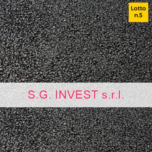 S.G. Invest S.r.l.
